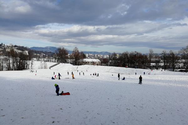 sled meadow Graz